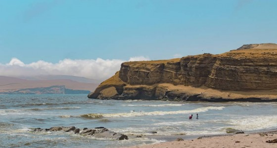Ballestas Islands & Paracas National Reserve from Lima