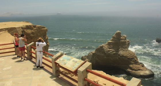 Ballestas islands and paracas national reserve tours full day